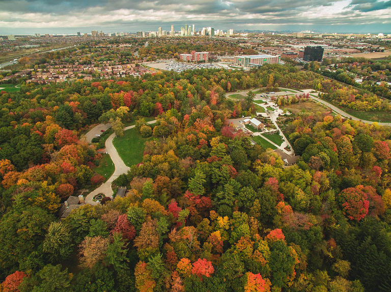 fall colours in mississauga captured with drone